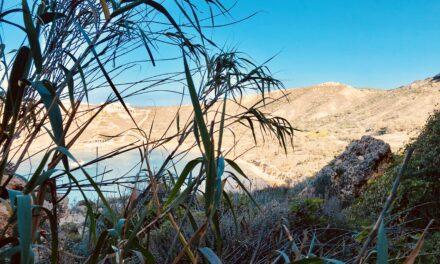 Kif nistgħu niksbu l-kunfidenza fina nfusna – Michelle Zerafa